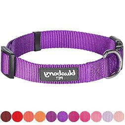 Blueberry Pet 32 Colors Classic Dog Collar, Dark Orchid, X-S