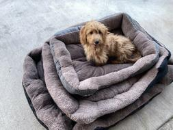 PAWZ Road Dog Bed Dog Mat