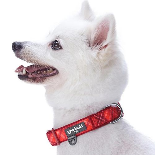 Blueberry Soft Comfy Scottish Aileen Red Style Designer Dog Collar, Small, Neck Adjustable Collars for