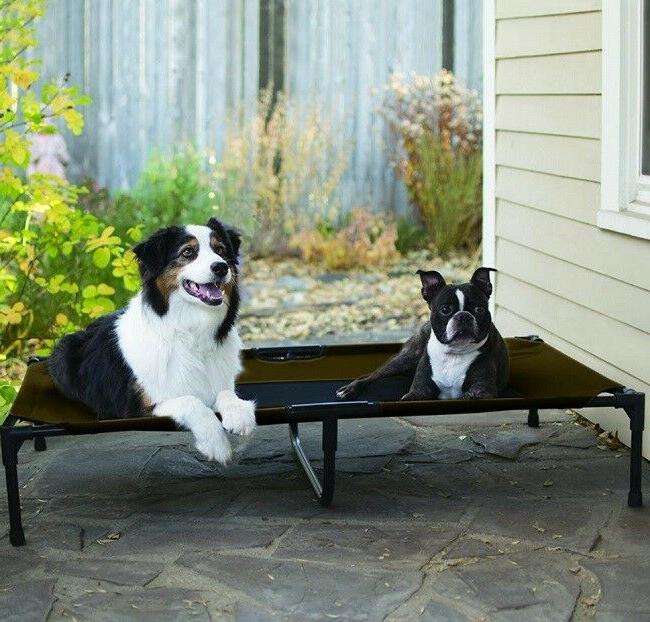 Big Elevated Pet Folding Large Dogs
