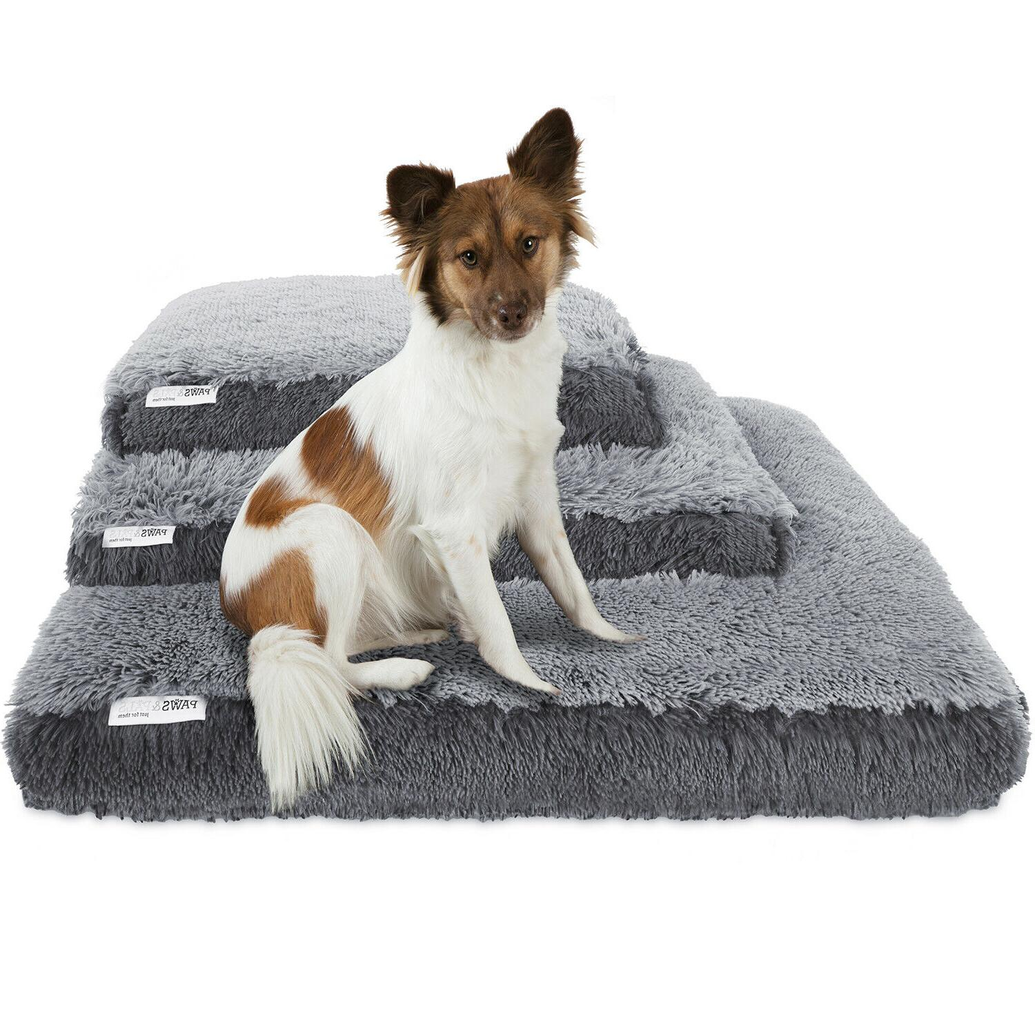 dog bed pets cats