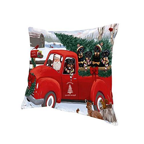 christmas santa express delivery rottweilers