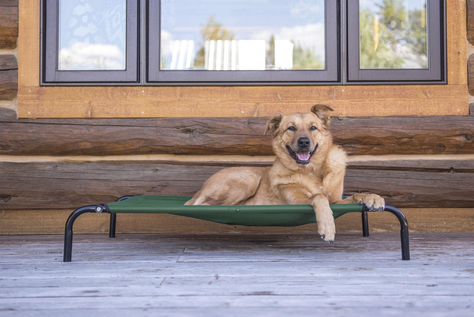 FurHaven Pet Elevated Cot Dog Bed Hammock