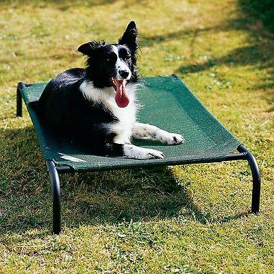 Medium Green Coolaroo Elevated Pet Dog Cot Bed Breathable Co