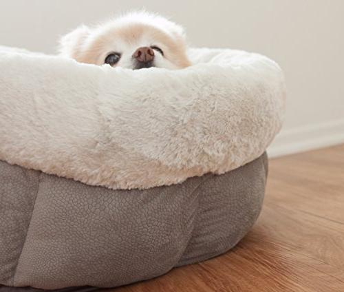 Best by Jumbo Cup - Cozy, Comfortable and Dog Bed High-Walls Improved Gray