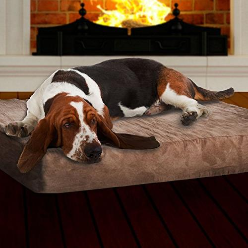 PETMAKER Foam Bed with Large