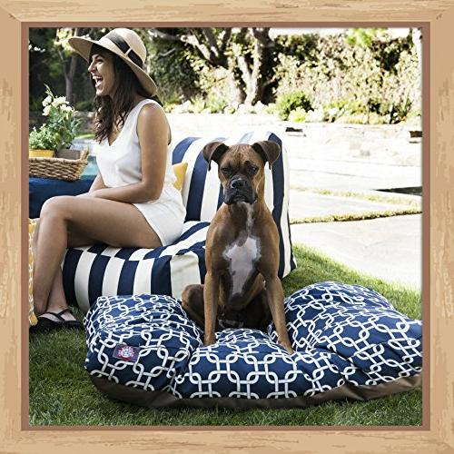 Navy Blue Large Rectangle Indoor Outdoor Pet Removable