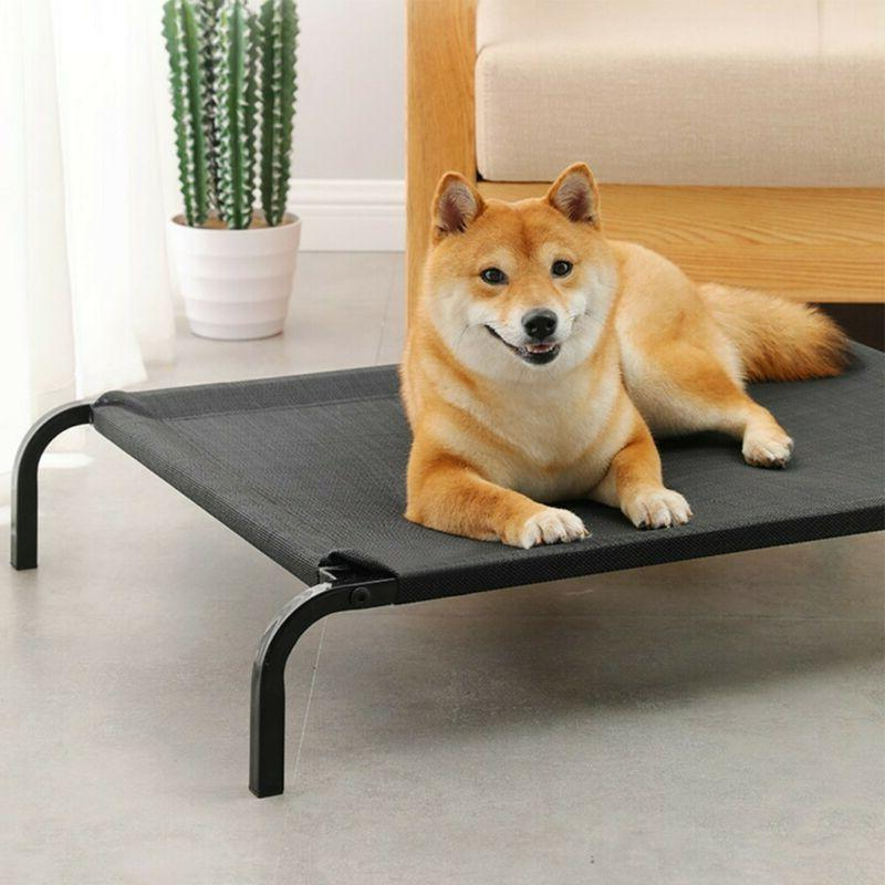 New Bed Elevated Pet Indoor Camping Steel Frame Mat