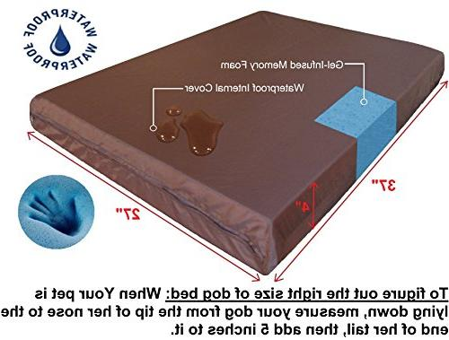 Dogbed4less Orthopedic Foam Washable Durable Cover, Waterproof Liner Extra Pet Bed Gel 37X27X4 Pad