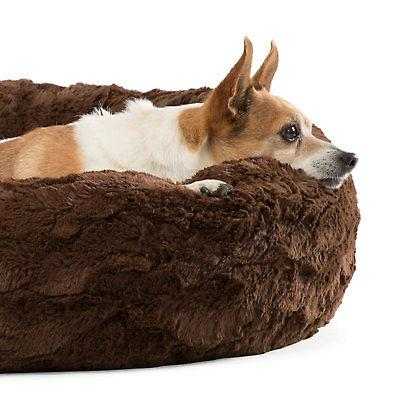 Best Orthopedic Relief Dog Bed,