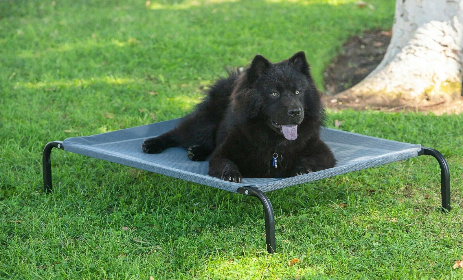 Elevated Dog Sleep Raised Cot for Outdoor-MM