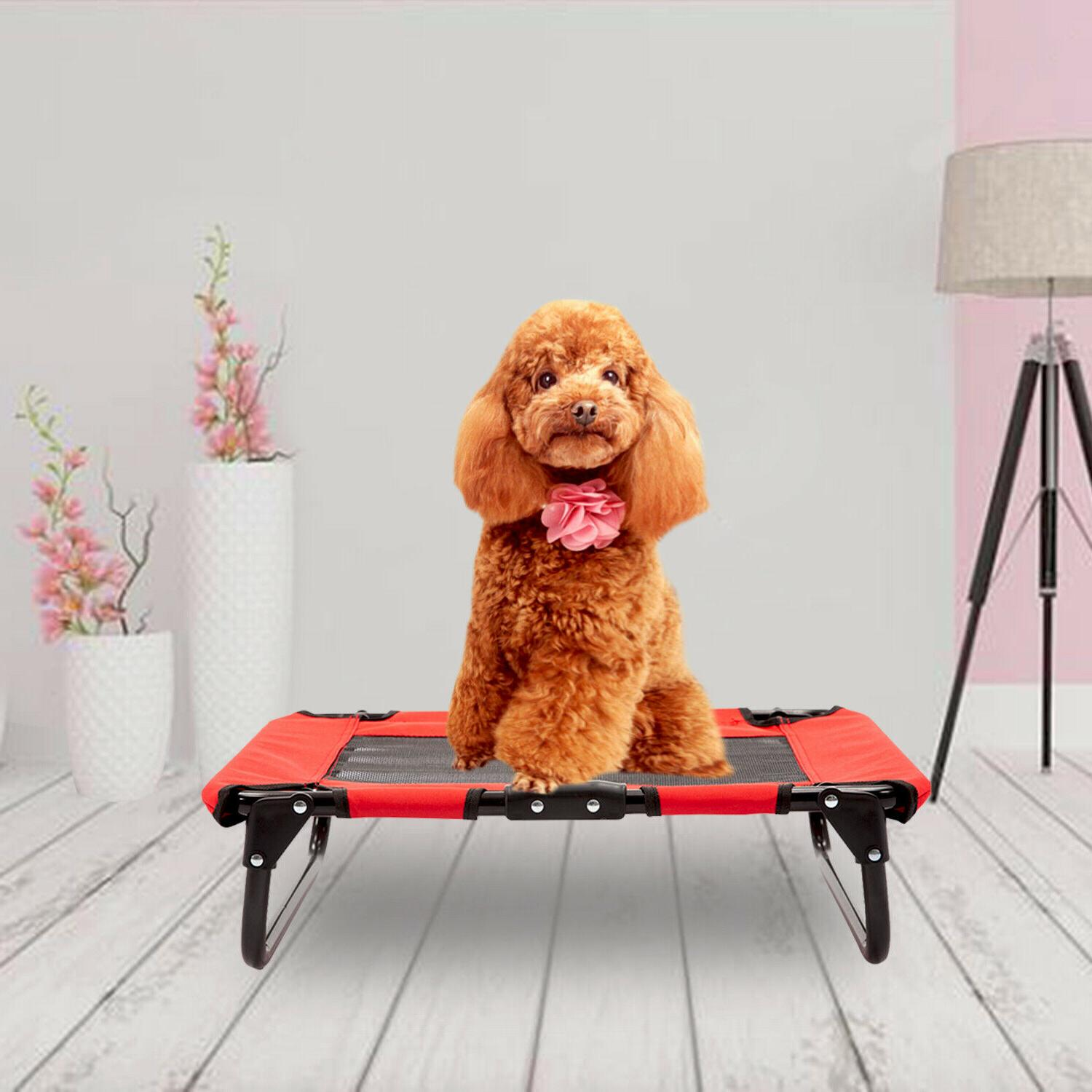 Pet Elevated Dog Bed Indoor Camp Frame