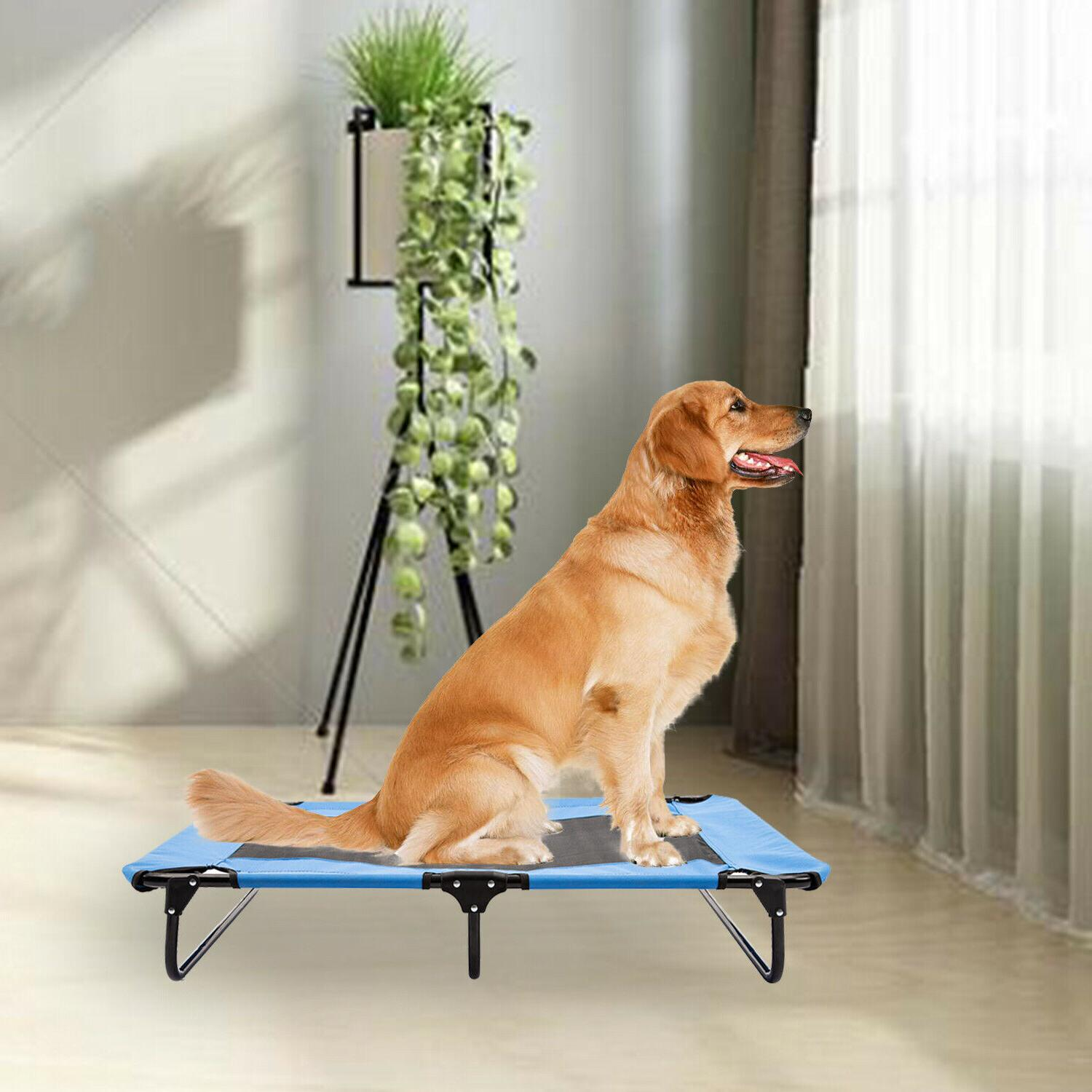 Pet Elevated Cot Dog Bed Hammock Camp Sleeper Steel Frame