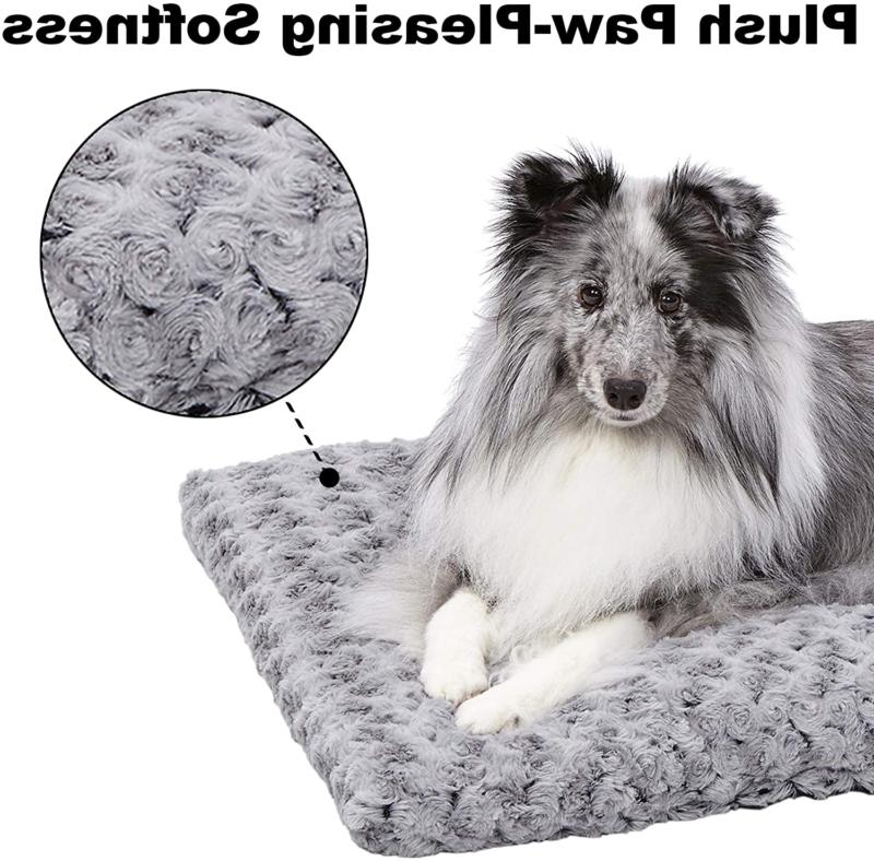 MidWest Homes for Pets Plush Bed Coco Bed & Cat
