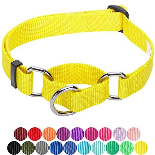 safety training martingale dog collar