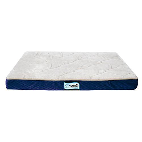 simmons beautyrest thera bed orthopedic