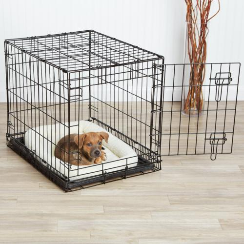 single door dog crate and padded bolster
