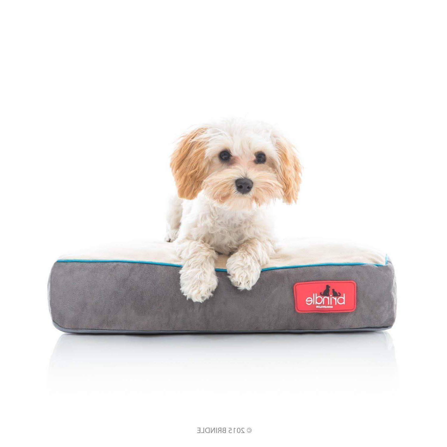 soft memory foam dog bed with removable