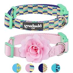 Blueberry Pet Pack of 2 Multiple Designs Mix and Match Prett