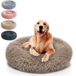 small large pet dog puppy cat calming